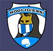 FC Hooligens